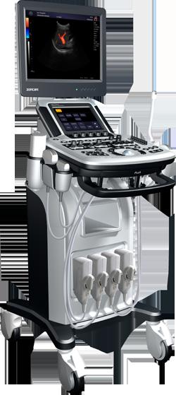 q3vet ultrasonografia